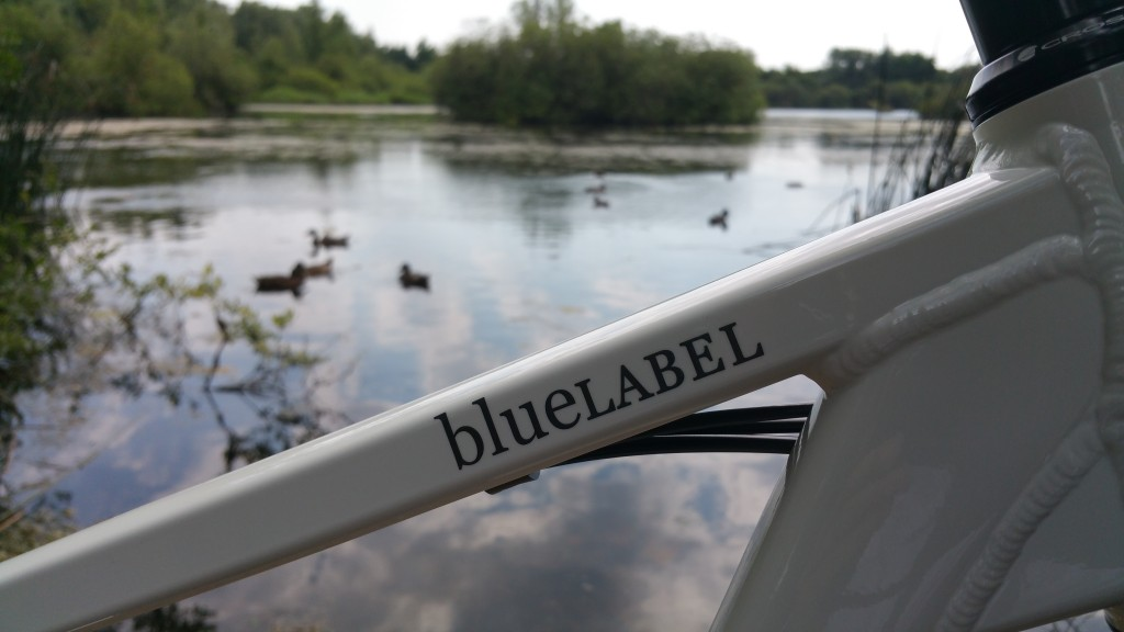 blueLABEL Charger Review - paintwork